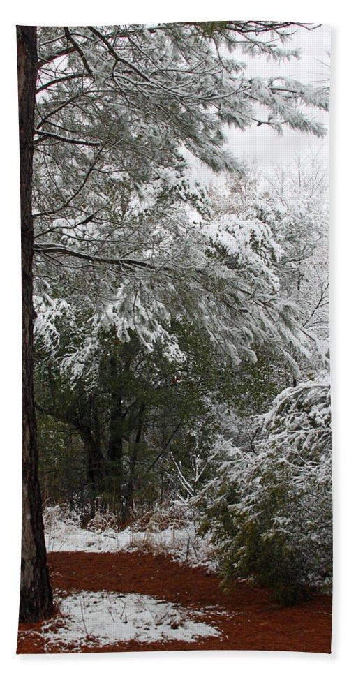 Snow Bath Sheet featuring the photograph Carolina Snowfall by Carolyn Stagger Cokley