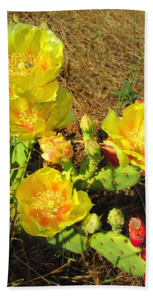 Prickly-pear Bath Sheet featuring the photograph Cascading Prickly Pear Blossoms by Joyce Dickens