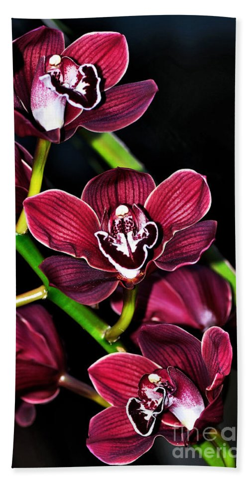 Photography Hand Towel featuring the photograph Cascading Red Orchids by Kaye Menner