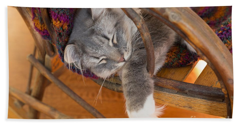 Cat Bath Sheet featuring the photograph Cat Asleep In A Wooden Rocking Chair by Louise Heusinkveld
