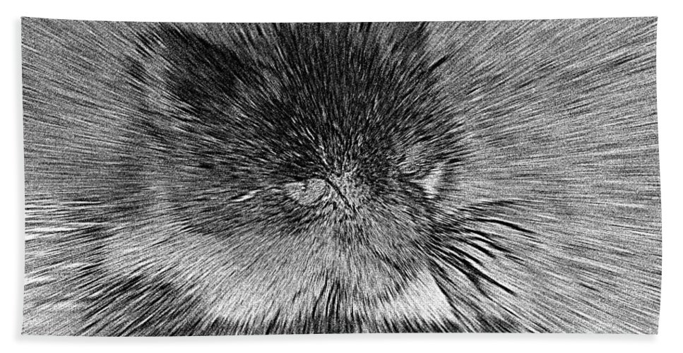2d Bath Sheet featuring the photograph Cat - India Ink Effect by Brian Wallace