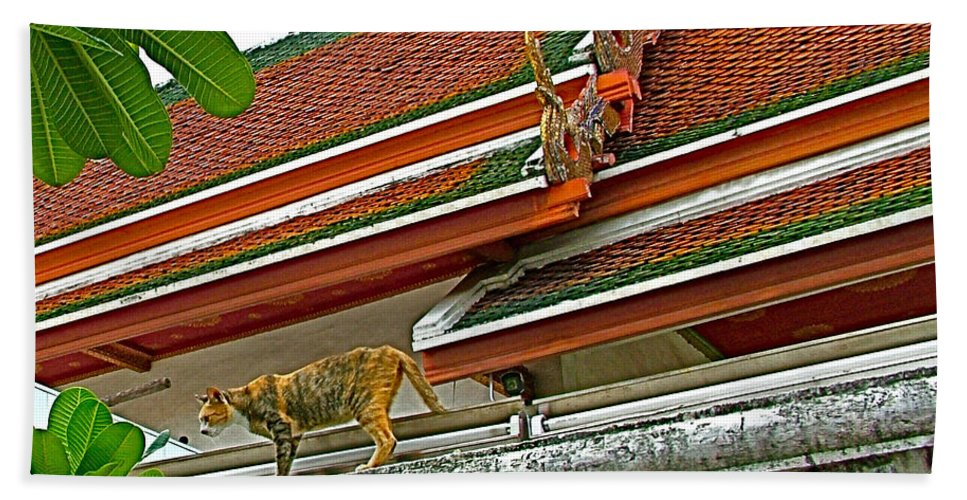 Cat On A Wat Po Roof In Bangkok Hand Towel featuring the photograph Cat On A Wat Po Roof In Bangkok-thailand by Ruth Hager