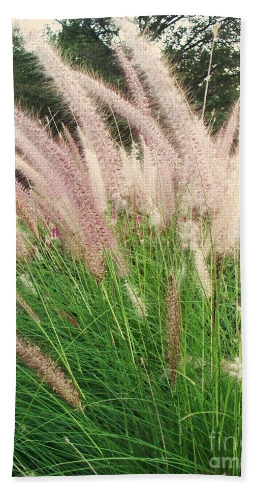 Plants Hand Towel featuring the photograph Cat Tails by Eric Schiabor