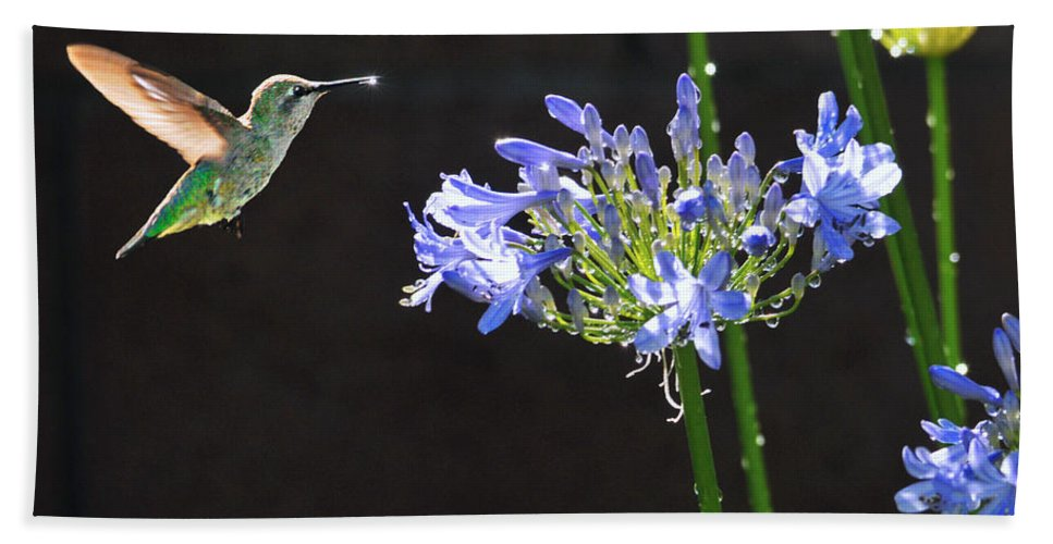 Hummer Bath Towel featuring the photograph Catching Some Rays by Lynn Bauer