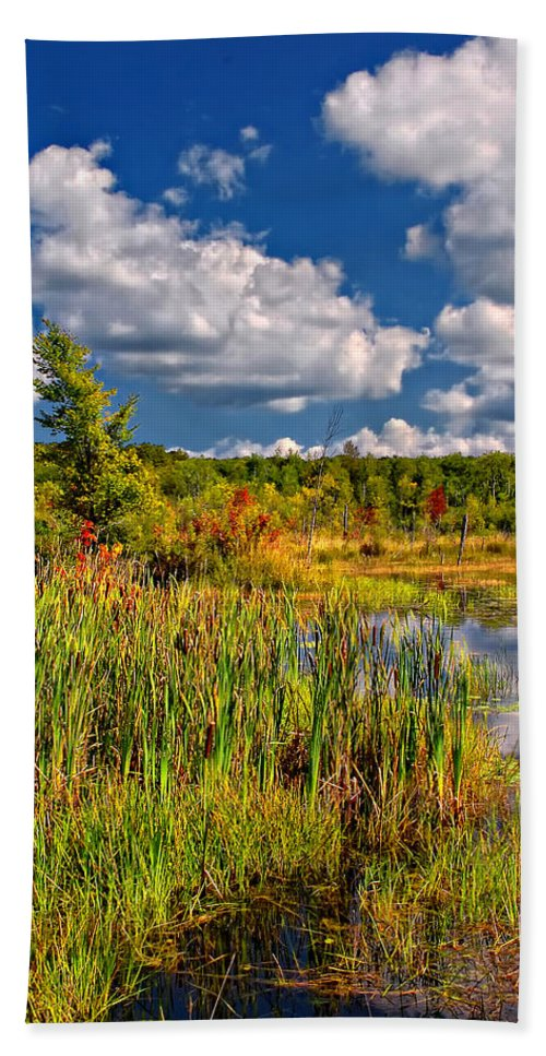 Landscape Hand Towel featuring the photograph Cattails And Clouds by Steve Harrington