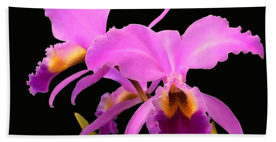 Cattaleya Hand Towel featuring the painting Cattleya by Shere Crossman