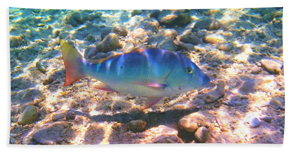 Fishing Bath Sheet featuring the photograph Cayman Snapper by Carey Chen