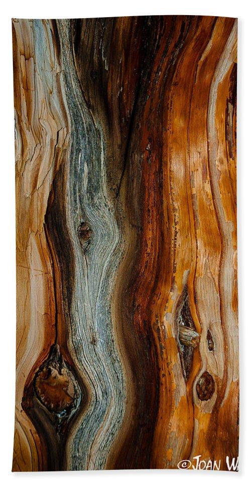 Bryce National Park Bath Sheet featuring the photograph Cedar Texture by Joan Wallner