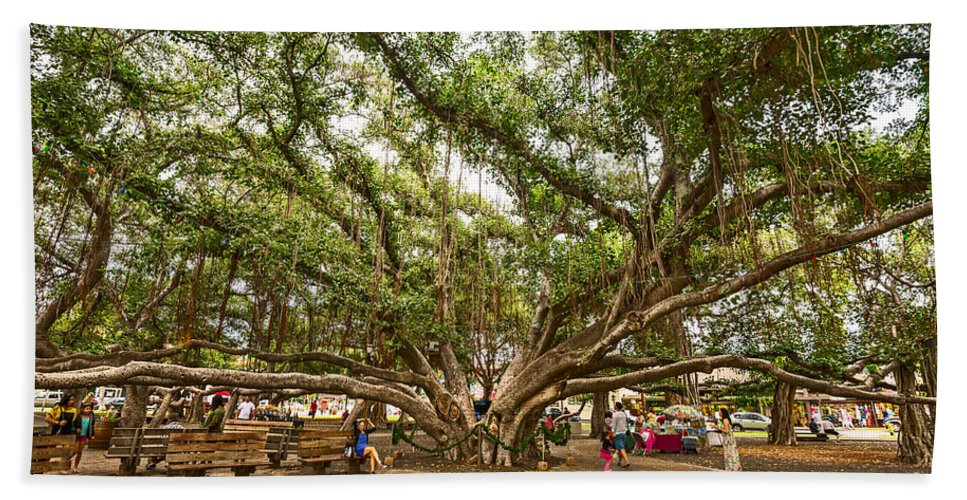 Banyan Tree Park Hand Towel featuring the photograph Central Court - Banyan Tree Park In Maui. by Jamie Pham