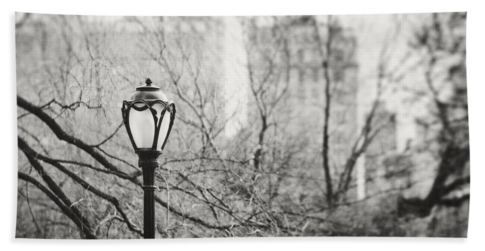 Nyc Bath Sheet featuring the photograph Central Park Lamppost In New York City by Lisa Russo