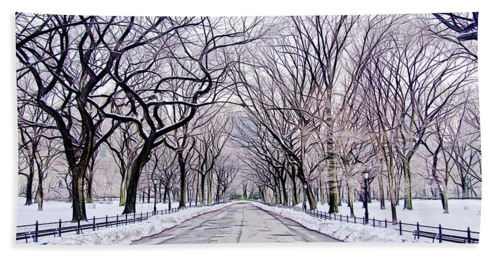 Central Park Mall Bath Sheet featuring the photograph Central Park Mall In Winter by Nishanth Gopinathan