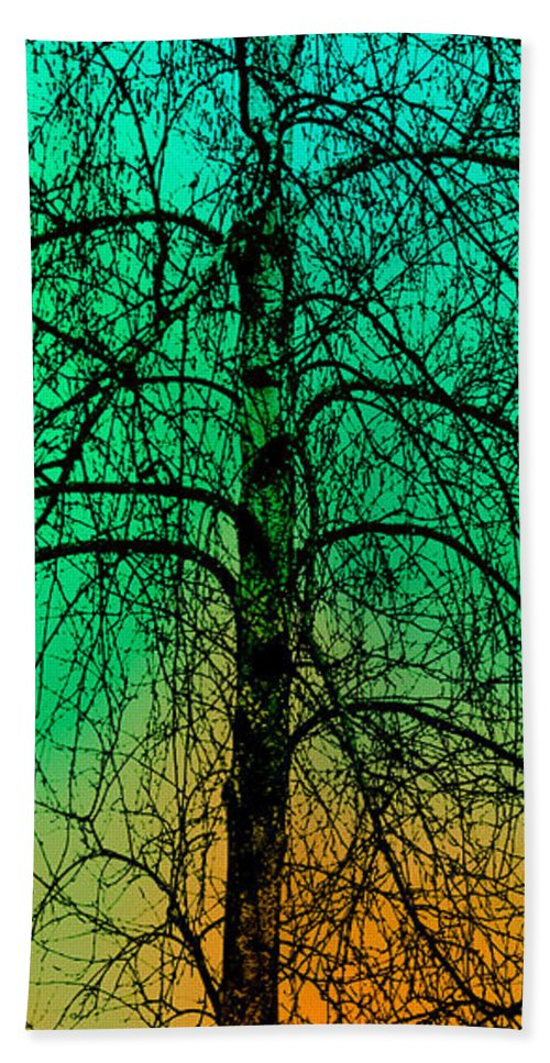 Tree Hand Towel featuring the photograph Change Of Seasons Number Tw0 by Bob Orsillo