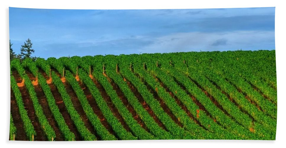 Hdr Hand Towel featuring the photograph Chardonnay Sky 17990 by Jerry Sodorff
