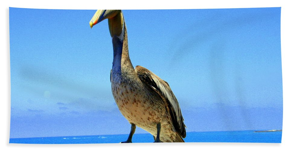 Charlie Hand Towel featuring the photograph Charlie The Pelican by Laurel Talabere