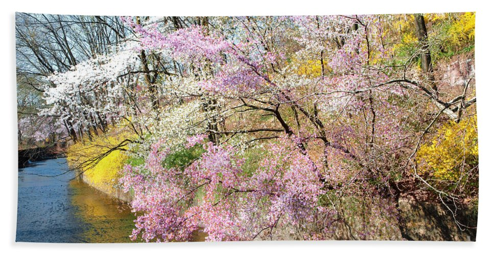 Cherry Blossoms Hand Towel featuring the photograph Cherry Blossom Land by Regina Geoghan