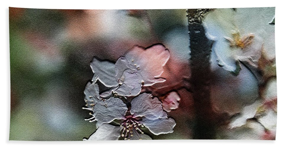 Flower Hand Towel featuring the photograph Cherry Blossoms by Ericamaxine Price