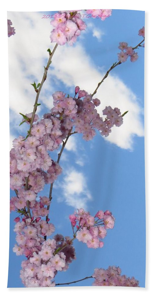 Flying Cherry Florals Bath Sheet featuring the photograph Cherry Floral Fountain by Sonali Gangane