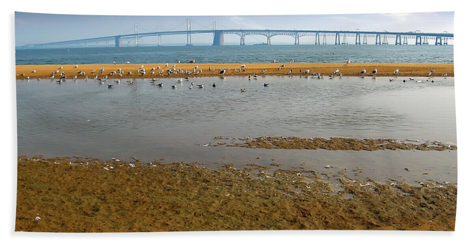 2d Hand Towel featuring the photograph Chesapeake Bay Bridge by Brian Wallace