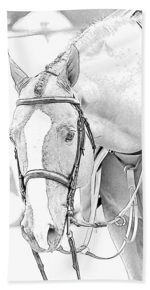 Horse Bath Sheet featuring the photograph Chestnut by Alice Gipson