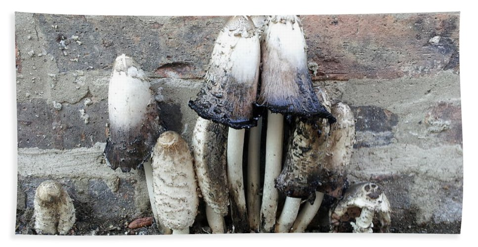 Street Art Bath Sheet featuring the photograph Chicago Alley Shrooms by Zac AlleyWalker Lowing