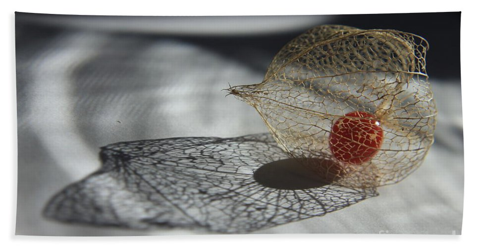 Plant Bath Sheet featuring the photograph Chinese Lantern Plant - B by Kenny Glotfelty