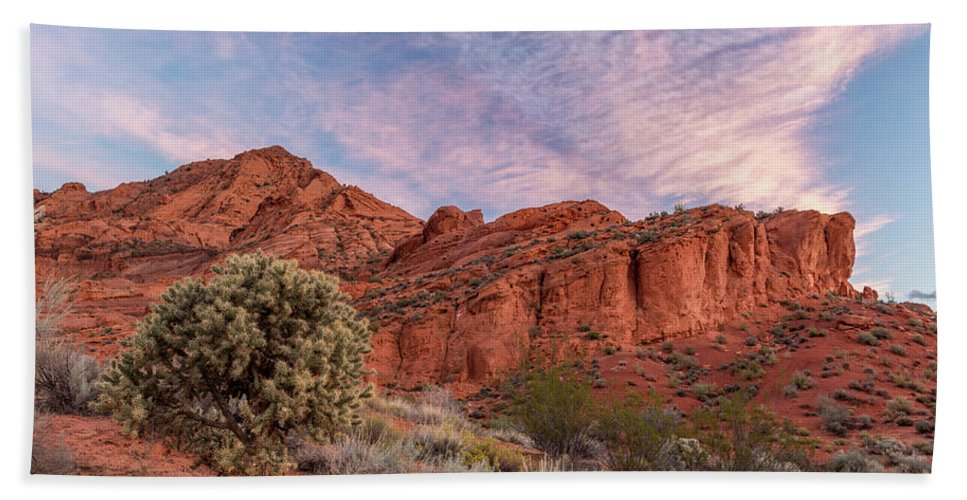 Photography Bath Sheet featuring the photograph Cholla Cactus And Red Rocks At Sunrise by Panoramic Images