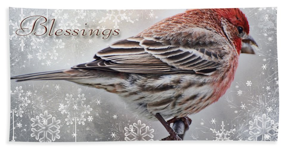 Nature Hand Towel featuring the photograph Christmas Blessings Finch Greeting Card by Debbie Portwood