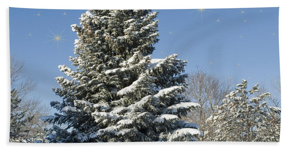 Landscape Hand Towel featuring the photograph Christmas Tree by Juli Scalzi