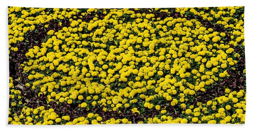 Daffodil Bath Sheet featuring the photograph Circle Of Beauty by Sotiris Filippou