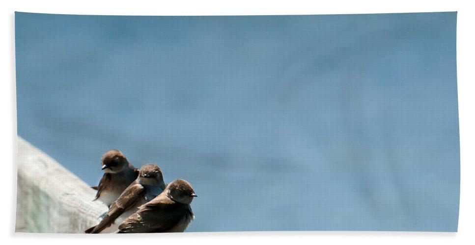Heron Heaven Bath Sheet featuring the photograph Close Enough by Edward Peterson