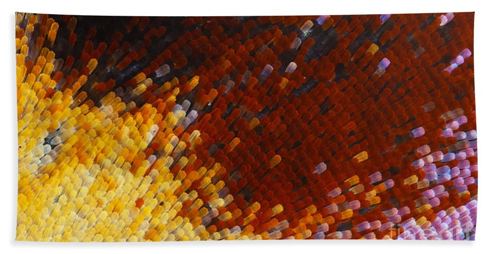 Close Up Hand Towel featuring the photograph Extreme Close Up Of A Butterfly's Wing by Jaroslaw Blaminsky