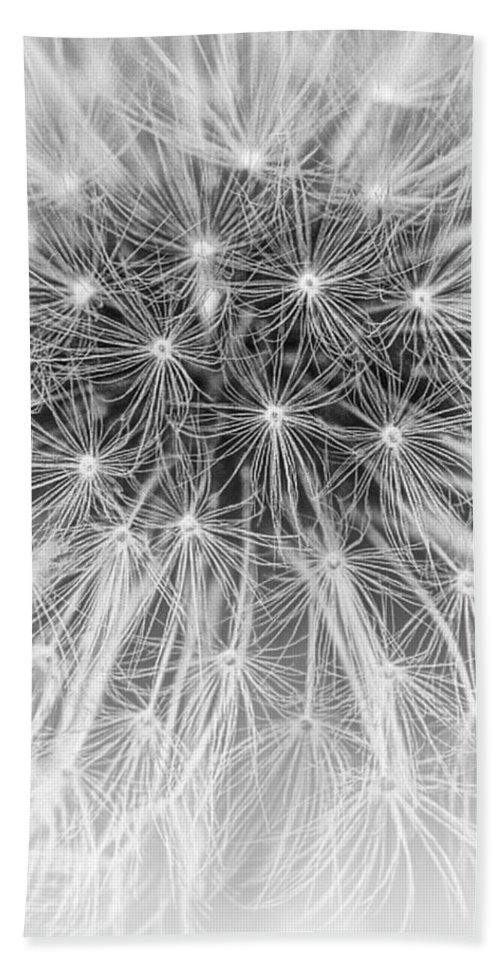 Art; Photography Bath Sheet featuring the photograph Close-up Of Dandelion Seeds by Randall Nyhof