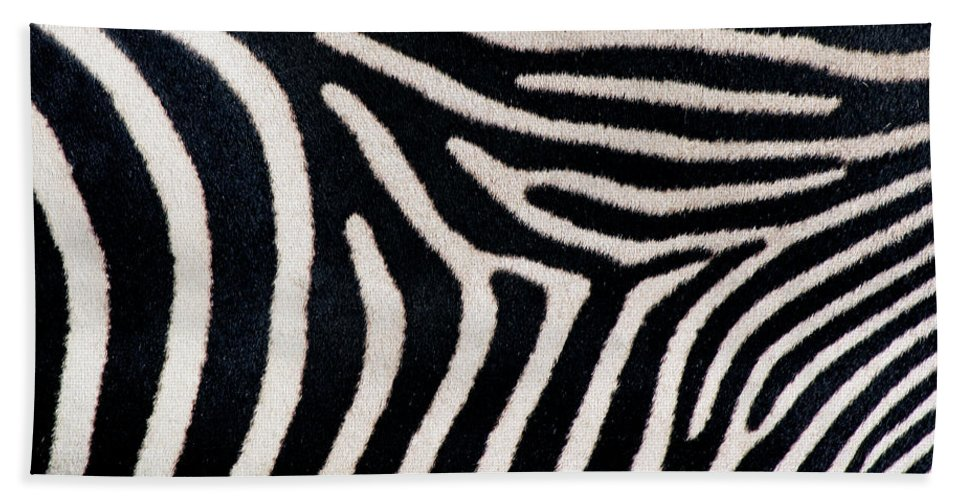 Photography Hand Towel featuring the photograph Close-up Of Greveys Zebra Stripes by Animal Images