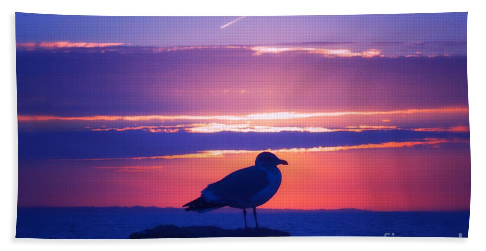 Sun Hand Towel featuring the photograph Coastal Concord by Joe Geraci