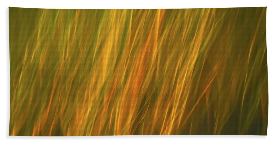 Coast Hand Towel featuring the photograph Coastal Grass by David Kay