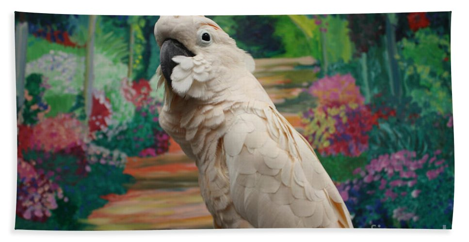 Cockatoo Bath Towel featuring the photograph Cockatoo by John Telfer