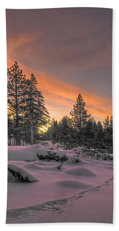Landscape Hand Towel featuring the photograph Cold Morning by Maria Coulson