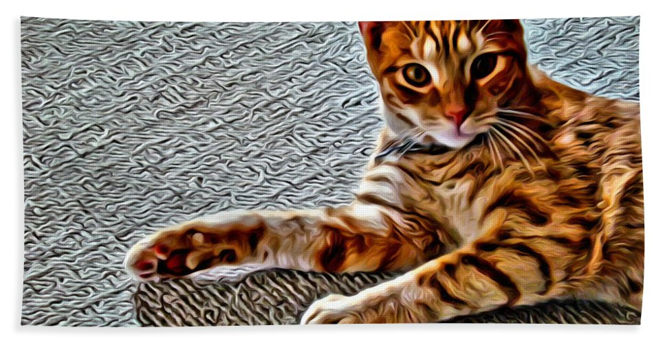 Cat Kitty Bath Sheet featuring the photograph Cole Kitty by Alice Gipson