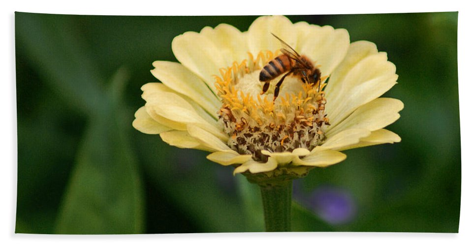 Honey Bee Bath Sheet featuring the photograph Collecting Nectar by Robert Edgar