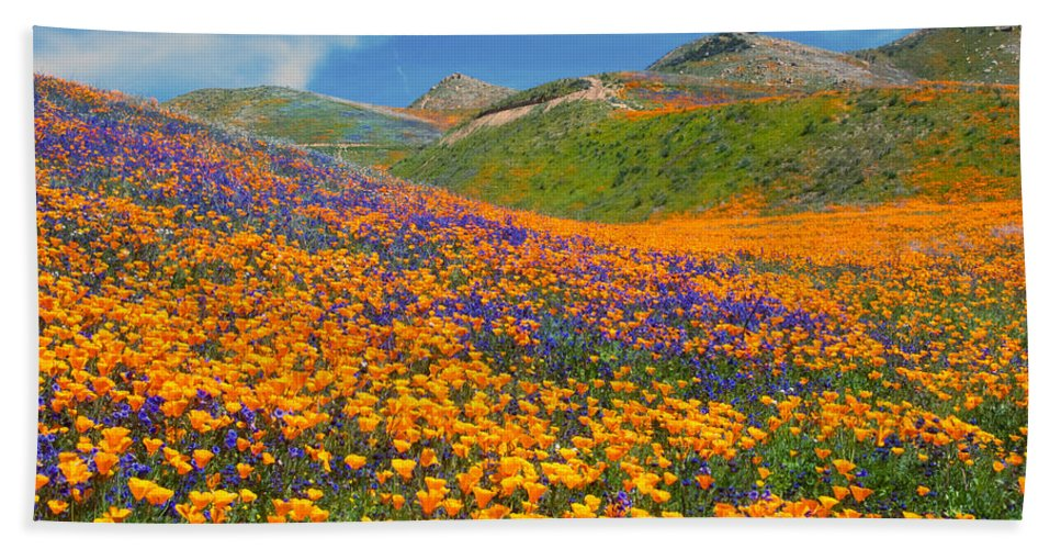 Wildflowers Bath Sheet featuring the photograph Color Filled Hills by Lynn Bauer