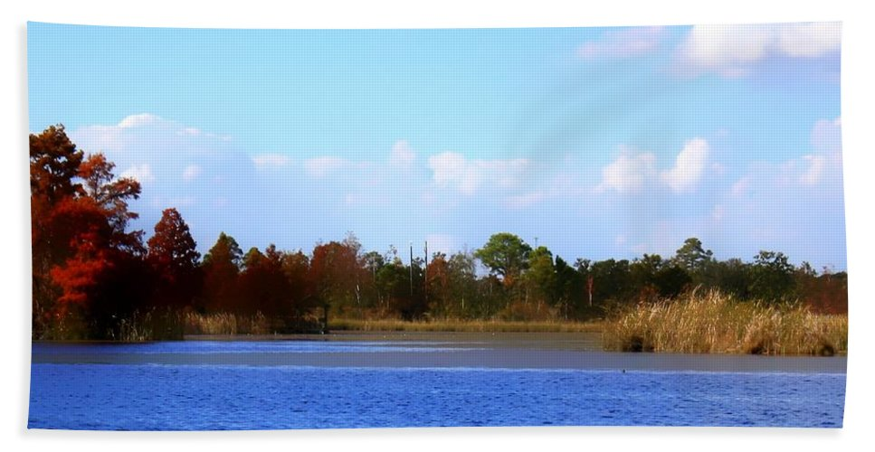 Fall Bath Sheet featuring the photograph Color Of Fall by Debra Forand