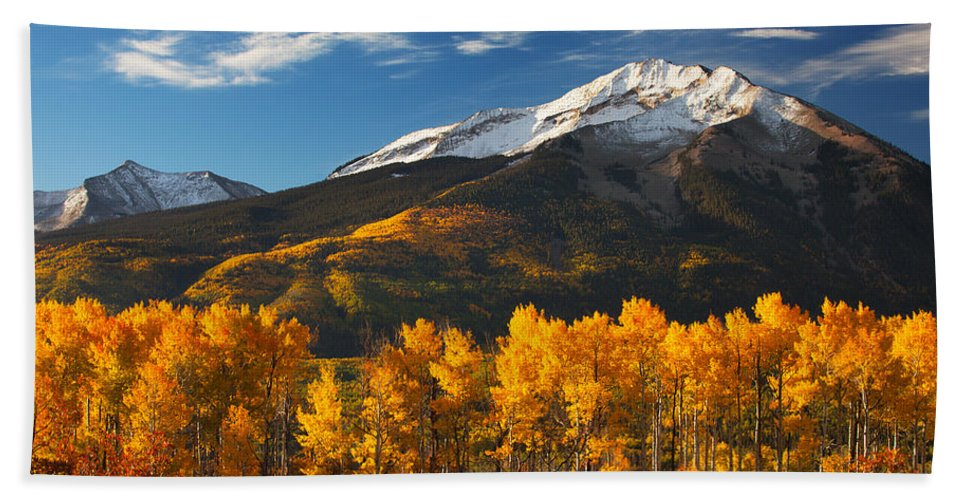 Aspen Bath Towel featuring the photograph Colorado Gold by Darren White