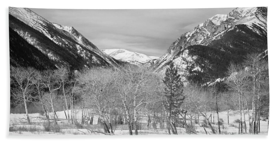 Trees Hand Towel featuring the photograph Colorado Rocky Mountain Winter Horseshoe Park Bw by James BO Insogna