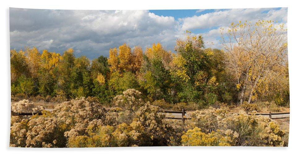 Landscape Bath Sheet featuring the photograph Colorado Urban Autumn Landscape by Cascade Colors