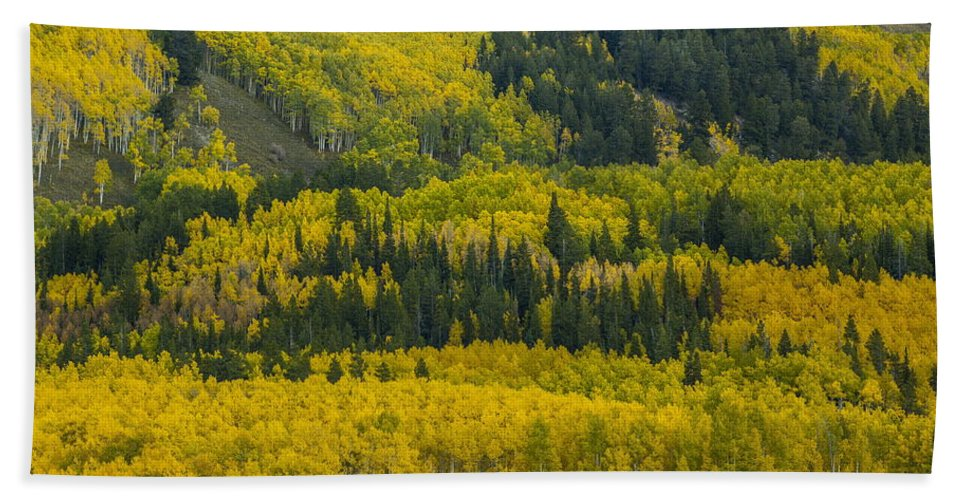 Landscape Hand Towel featuring the photograph Colored Hillside by Bill Sherrell