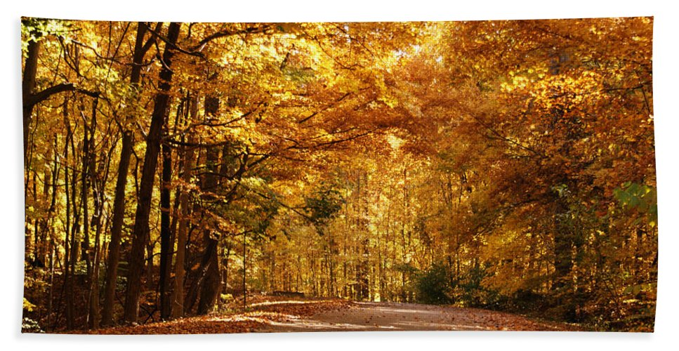 Autumn Hand Towel featuring the photograph Colorful Canopy by Sandy Keeton