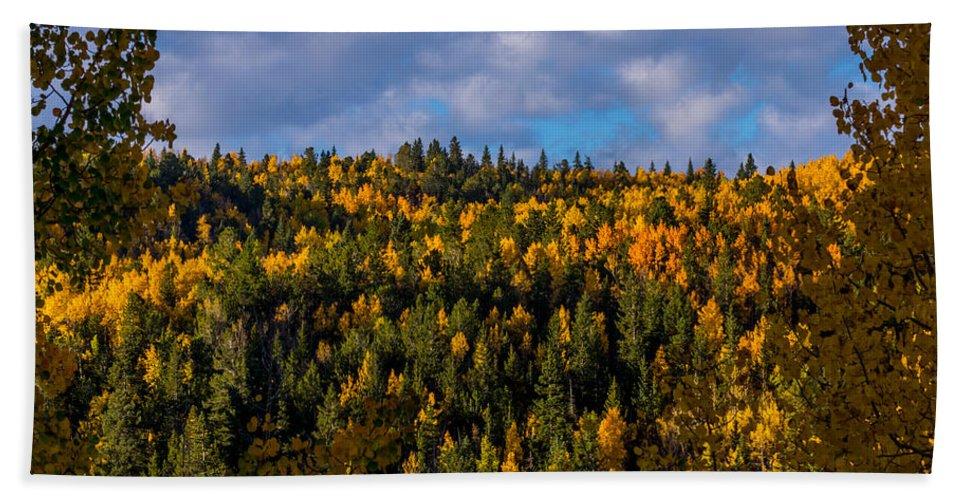 Autumn Bath Sheet featuring the photograph Colorful Colorado 2014 by Ernie Echols