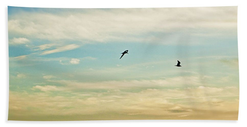 Florida Bath Sheet featuring the photograph Colorful Flight by Janie Johnson