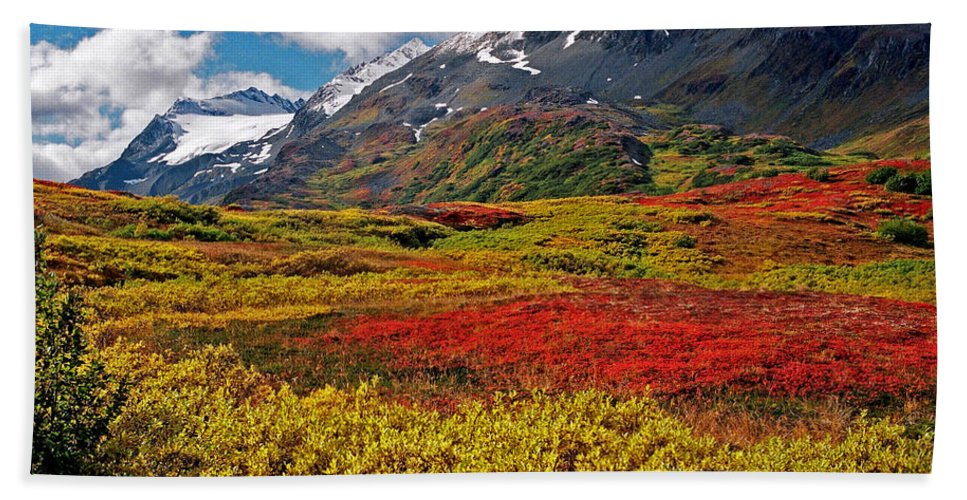 Alaska Bath Towel featuring the photograph Colorful Land - Alaska by Juergen Weiss