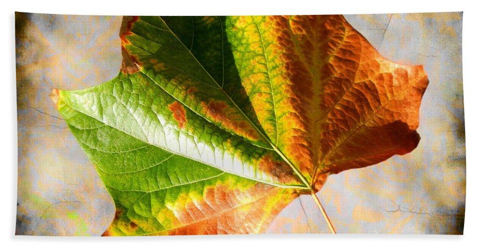 Colorful Leaf On The Ground Bath Sheet featuring the photograph Colorful Leaf On The Ground by Mariola Bitner